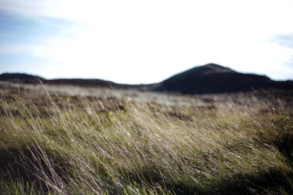sylt-tipps-eindrücke-insel-reisen-sehenswürdigkeiten-dünen