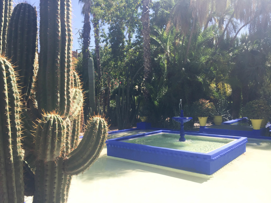 marrakech-traveldiary-tipps-fashionblog-reiseblog-sehenswüridgkeiten-jardin-majorelle_9855