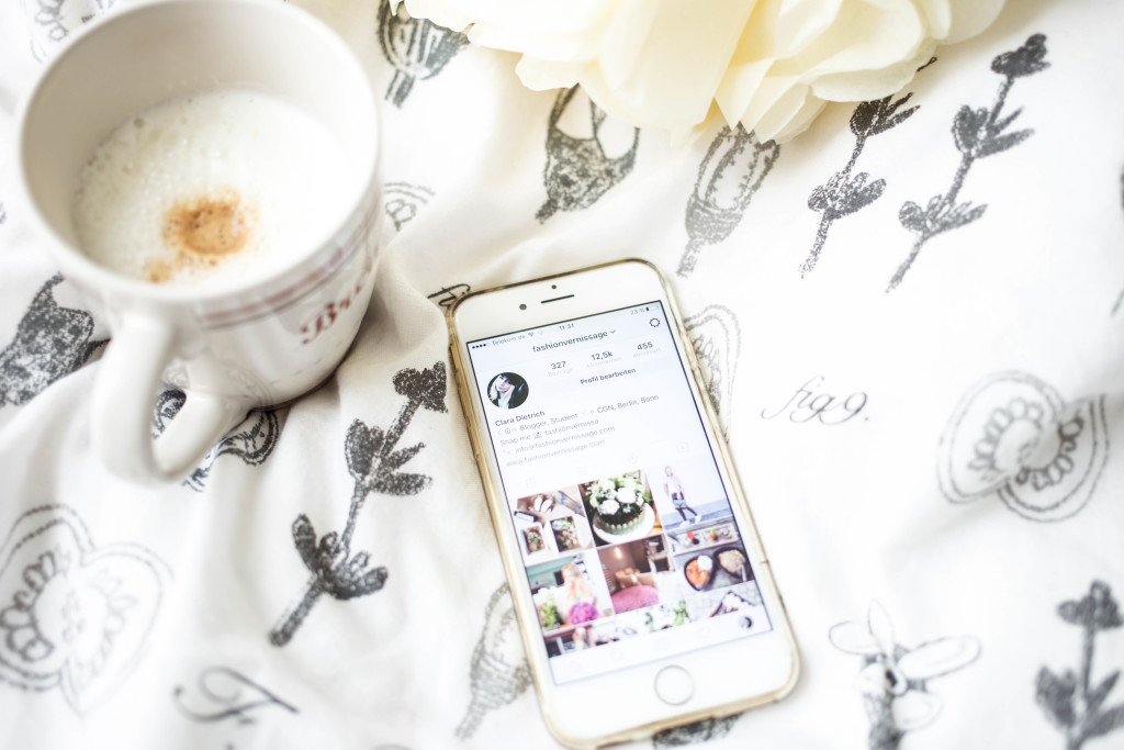 blogger-basics-instagram-tipps-bilder-follower