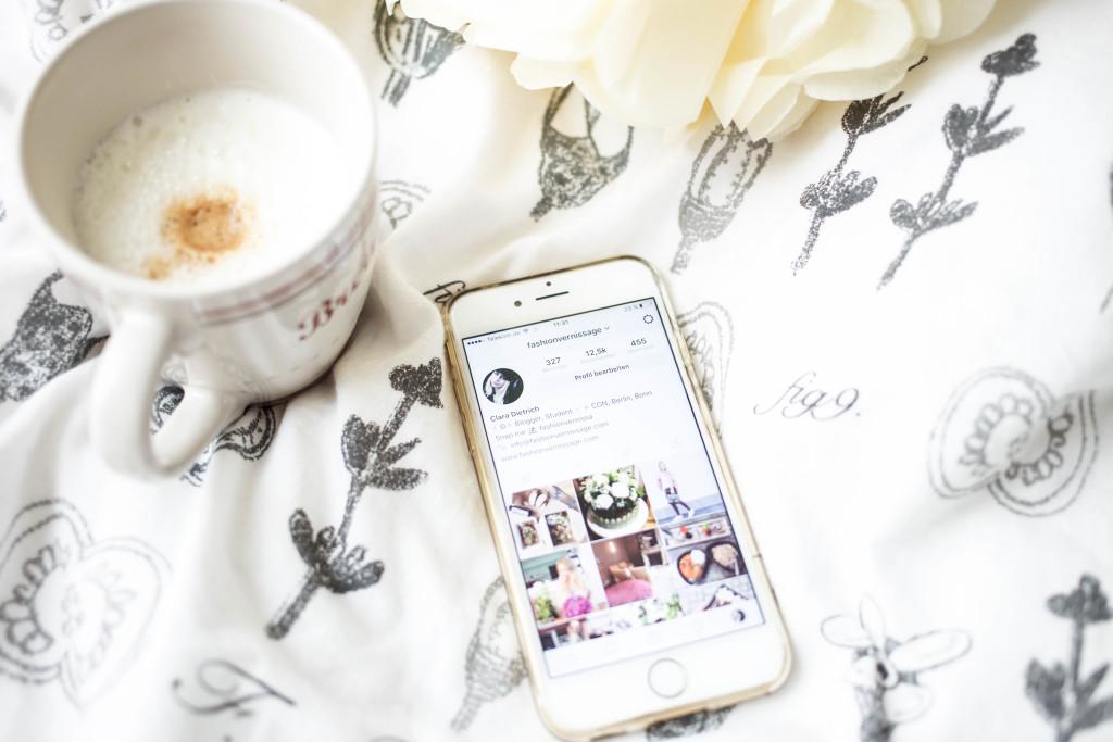 blogger-basics-instagram-tipps-bilder-follower